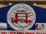 Międzynarodowe Mistrzostwa Sumo 2014