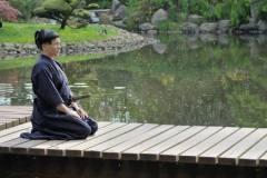 Pokazy- Ogród japoński